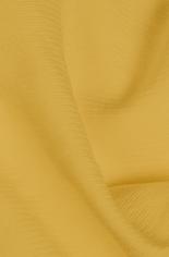 Panton® TCX 14-0952 Spicy Mustard